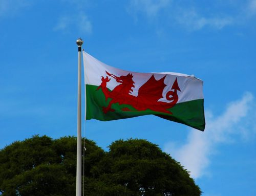 Intelogy to present at Celtic Manor, Wales on Monday 20th May 2019