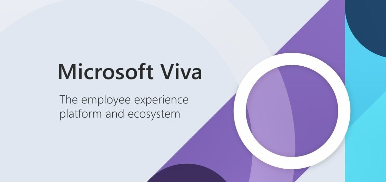 Microsoft Viva image