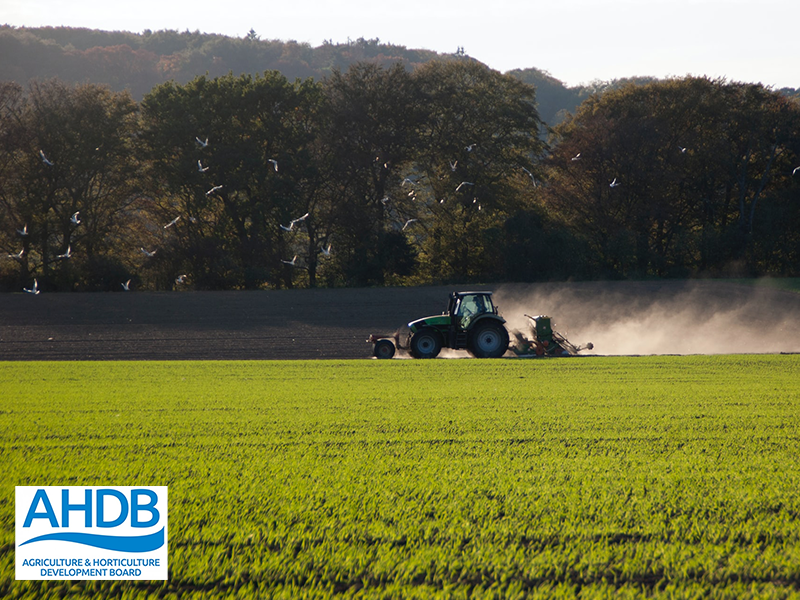 RAG Analysis Management Solution for AHDB